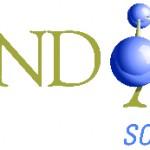 randaid-react-logo2